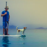 sup repair in the united states